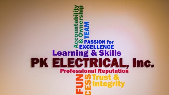 PK Electrical Values
